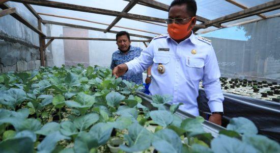 Wali Kota Resmikan Restoran Berkonsep Kebun Hidroponik