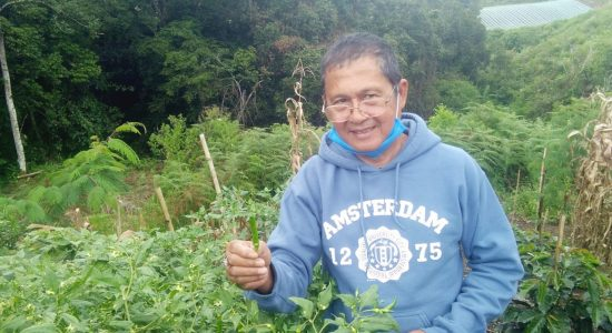 Cegah Syndrome Pensiun, Agustama Nikmati Jadi Petani