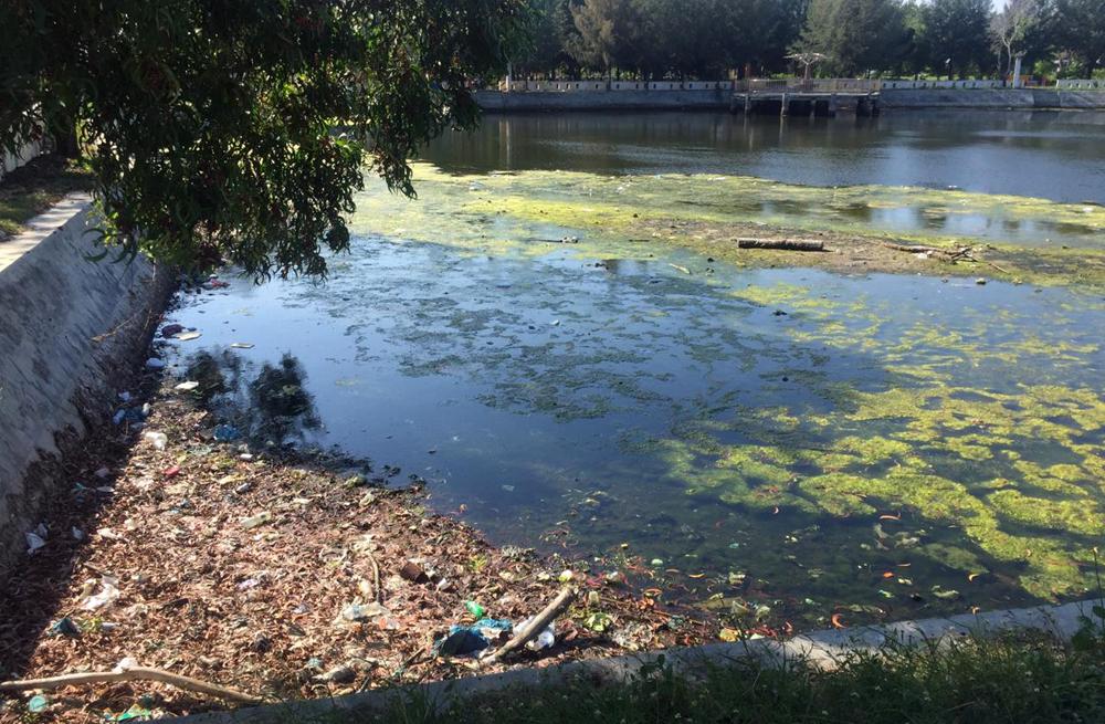 Sejumlah Kawasan Wisata Di Ulee Lheue Di Penuhi Sampah Acehimage Com