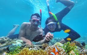 5 Alat yang Wajib Disiapkan Pemula Snorkeling
