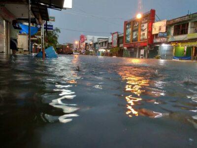 Ombudsman, Mencegah Bencana Banjir, Komitmen Bersama Penting
