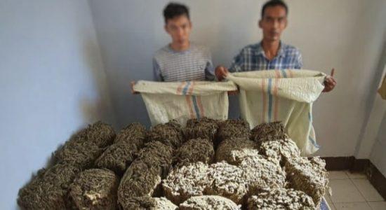 Satresnarkoba Tangkap Sembilan Tersangka Penyalahgunaan Narkotika