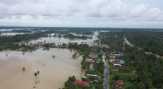 3000 Hektar Sawah Terancam Gagal Panen