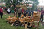 Polda Aceh Musnahkan Ratusan Kilogram Ganja
