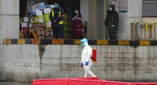 WHO Kembali Usulkan Investigasi Asal-usul Corona di China