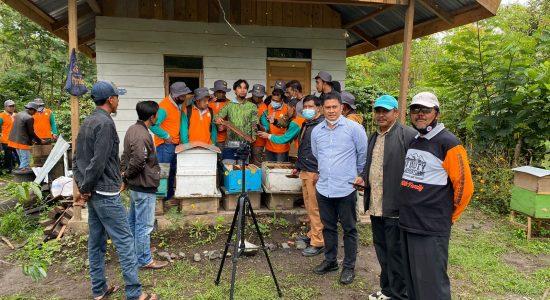 Budidaya Lebah Madu Berpotensi Tingkatkan Perekonomian Masyarakat